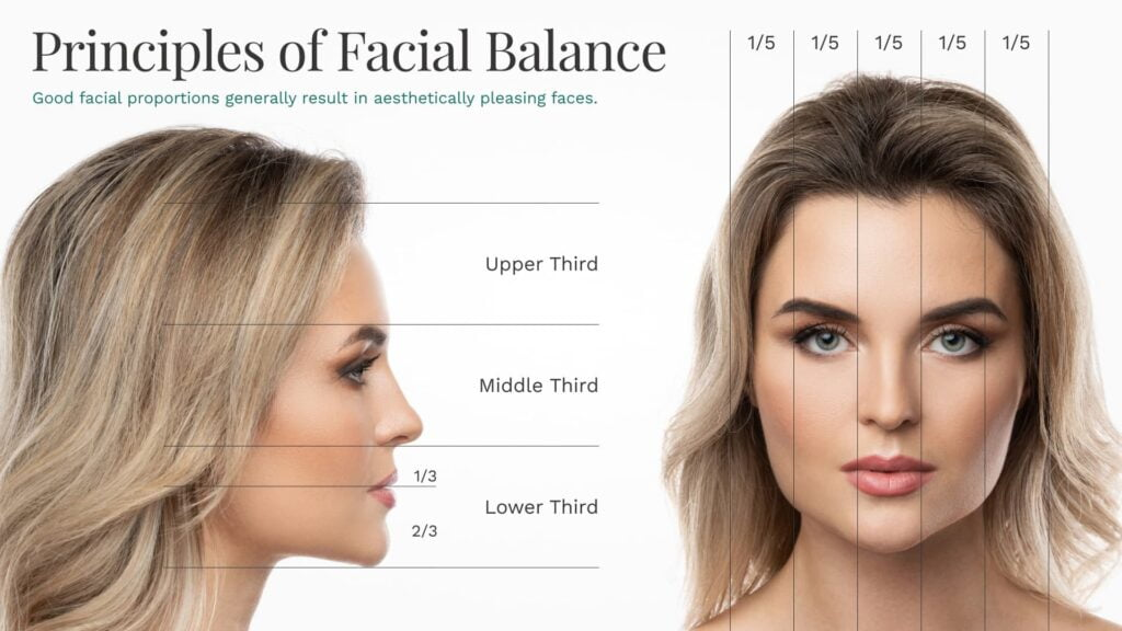 BPS Principles of Facial Balance